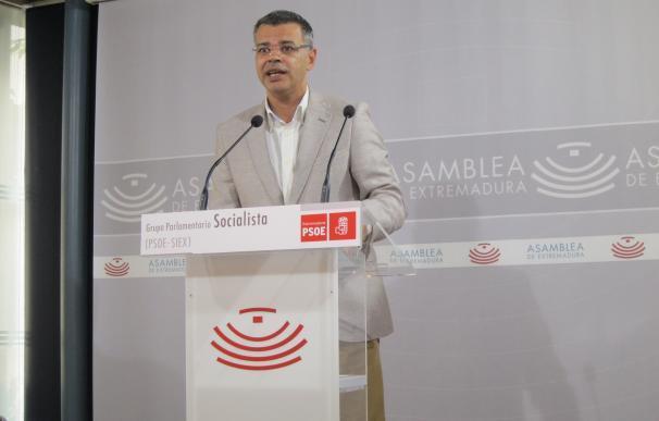 """El PSOE extremeño destaca que los datos """"no son malos"""" aunque admite que """"hay margen de mejora"""""""